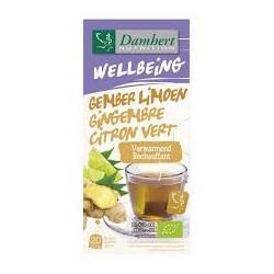 DAMHERT WELLBEING TEA TIME GINGEMBRE CITRON VERT B20 SACHETS